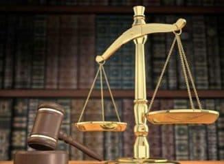 первичным звеном системы отрасли конституционного права является