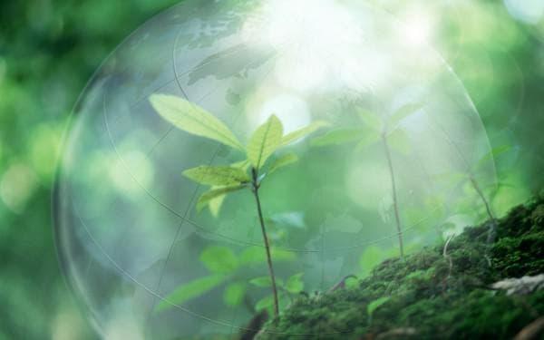 платность природопользования
