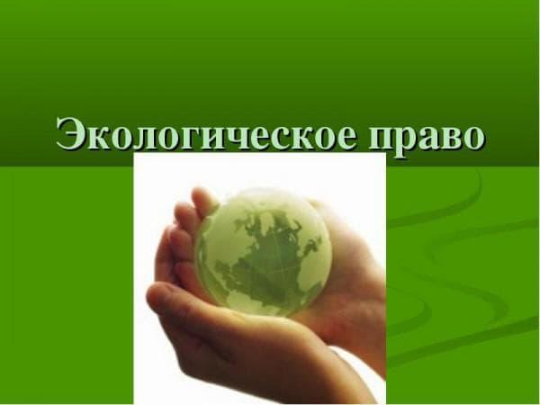 понятие объектов экологического права