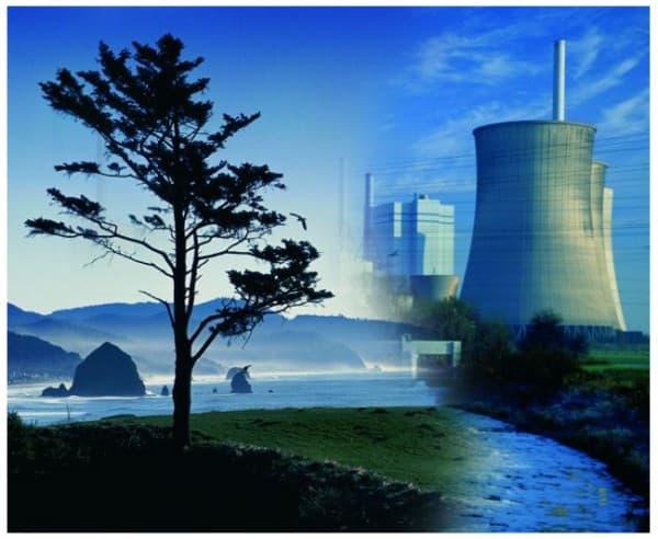 презумпция экологической опасности