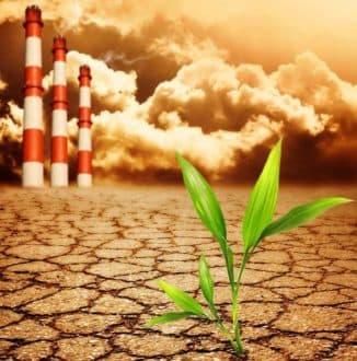понятие экологического права